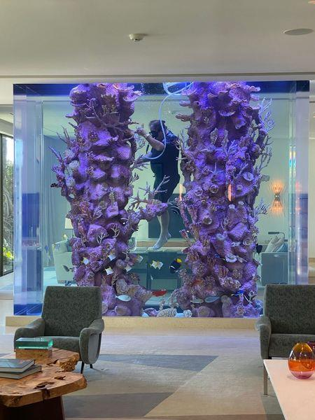 An aquarium in the house requires a scuba diver to maintain it.