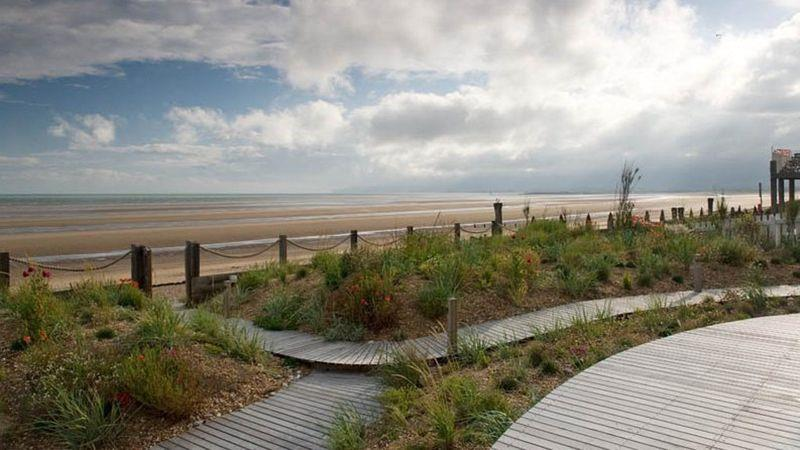 Thompson's modern coastal garden, Camber Sands, East Sussex