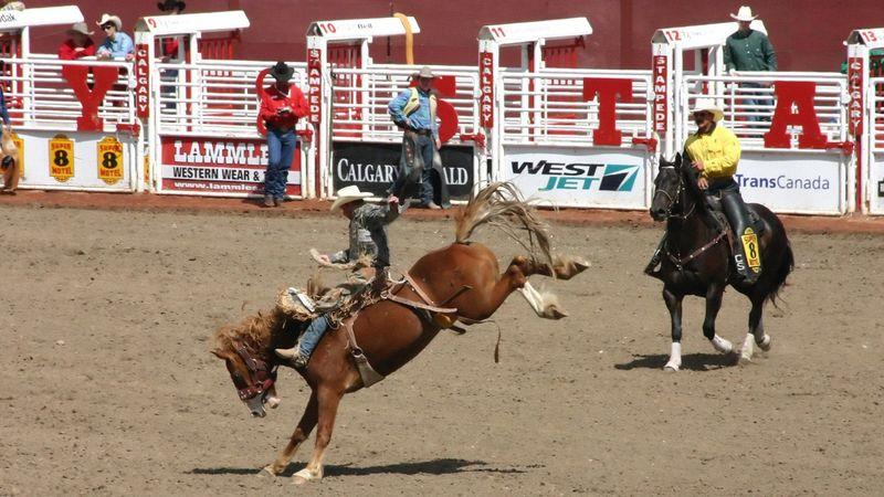 The Calgary Stampede has been running for more than a century