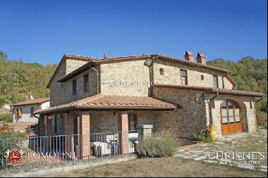 Tuscany - VILLA WITH ANNEX AND POOL FOR SALE ANGHIARI