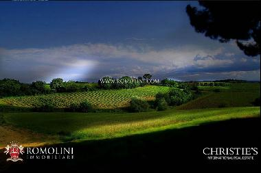 Tuscany - WINE ESTATE FOR SALE IN MONTEPULCIANO