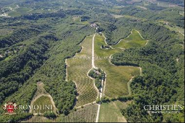 Umbria - ORVIETO: 79.2 HA ESTATE WITH WINERY AND AGRITURISMO