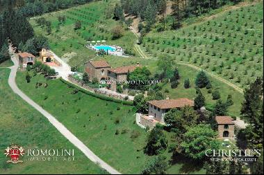 Chianti - ESTATE WITH WINERY AND HUNTING RESERVE FOR SALE IN TUSCANY