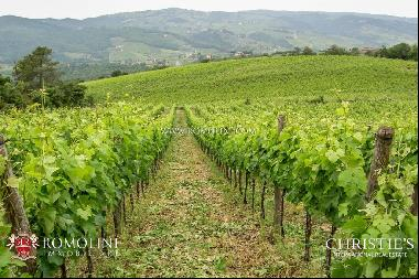 Chianti Classico - RENOWNED 15-HA WINERY FOR SALE IN TUSCANY