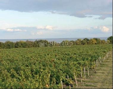 AOC Medoc - 25 Ha on a croup of Graves