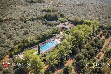 Umbria - MODERN VILLA WITH OLIVE GROVE FOR SALE IN ASSISI