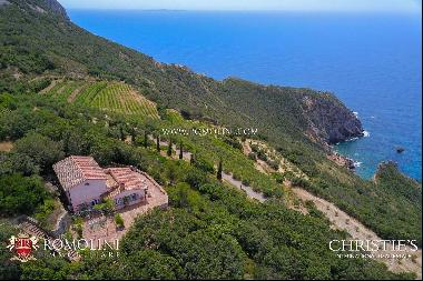 Argentario - WATERFRONT ESTATE WITH VILLAS AND PRIVATE SEA ACCESS FOR SALE