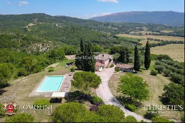 Umbria - AGRITURISMO WITH OLIVE GROVE AND VINEYARDS FOR SALE CORCIANO